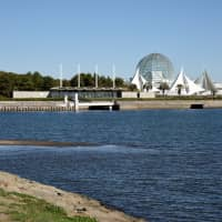 Kasai Kaihin Park first opened in June 1989 and was last month designated as a wetland of international importance, also known as a Ramsar Site. | SATOKO KAWASAKI