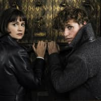 Katherine Waterston discusses making magic in 'Fantastic Beasts: The Crimes of Grindelwald'
