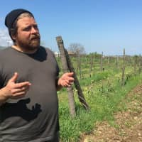 Grafted into Georgian wine culture: American John Wurdeman is the 'foster parent' to 417 of Georgia's 500-plus species of grapes. | MELINDA JOE