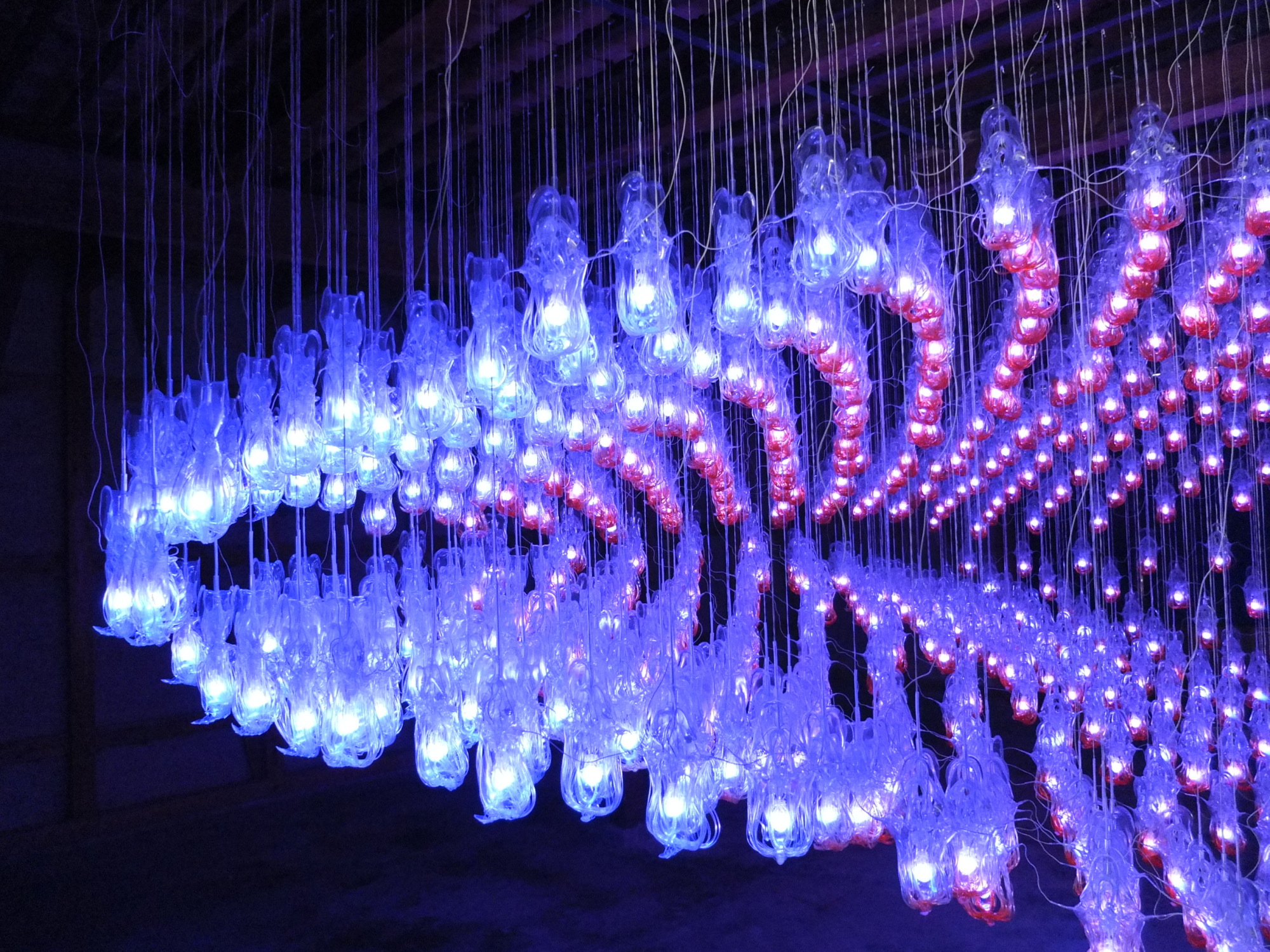 Lit up: 'Magasinoaplas' by Shimpei Kawai is a biennale highlight. | KATHERINE WHATLEY