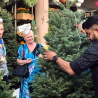 Two Russian expats look to buy a real Christmas tree on Hudaiba road in Dubai, United Arab Emirates, Sunday. | REUTERS