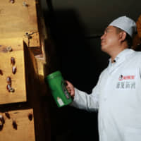 A staff member shows cockroaches in shelves to the camera at a farm operated by pharmaceutical company Gooddoctor in Xichang, China, in August. | REUTERS