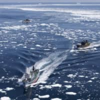 A photo provided by U.S.-based anti-whaling activist group Sea Shepherd Conservation Society shows its boat chasing a Japanese whaling vessel (center foreground) in the Antarctic Ocean in January 2011. | AP / VIA KYODO