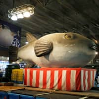 A giant statue of a pufferfish is displayed at Karato fish market in Shimonoseki, Yamaguchi Prefecture, on Nov. 13. | REUTERS