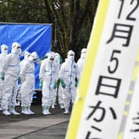 Swine fever reported at public research institute as Gifu Prefecture logs third case this year
