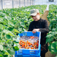 A new direction for Japanese agriculture