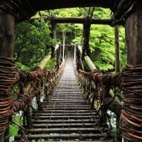 Simply gorgeous: Kazurabashi is one of three remaining vine bridges that cross the Iya Valley. | COURTESY OF MIYOSHI TOURISM