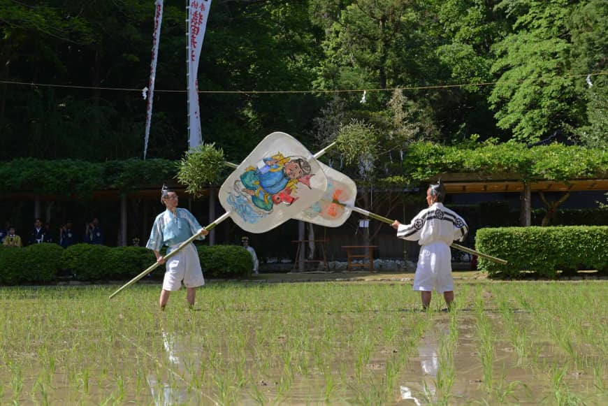 Fair harvest: Giant fans are used as part of a rice planting ritual at Sarutahiko Shrine.