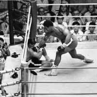 Heavyweight champion George Foreman knocks out challenger Jose Roman on Sept. 1, 1973, at Tokyo's Nippon Budokan in his first title defense. | AP