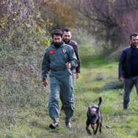 Turkish police officers with a sniffer dog comb an area of the Termal district in the northwestern province of Yalova for evidence in the investigation into the killing of Saudi journalist Jamal Khashoggi. | REUTERS