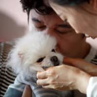 Concerned by high cost of raising children, many South Koreans opt to dote on pets