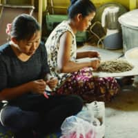 Cambodian women in the village of Anlong Pi produce paper and craft works from banana fibers. | COURTESY OF TAKUYA YAMASE