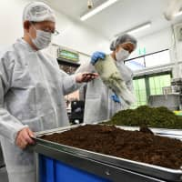 Brewer Yuji Shimada and his assistant sort used green tea and black tea leaves, which will be recycled as fertilizer. Shimada designed the kombucha brewery to be ecologically friendly, striving to produce minimum waste. | YOSHIAKI MIURA