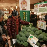 Producing results: People taking part in a food waste-recycling tour look at broccoli grown from compost sold at the Kakuozan Frante supermarket in Nagoya's Chikusa Ward. | CHUNICHI SHIMBUN