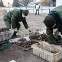 Remains of hundreds of Jews unearthed in Nazi-era mass grave in Belarus