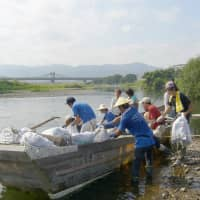 The amount of plastic litter along the Hozu River in Kameoka has declined amid rising public awareness and clean-up efforts. | COURTESEY OF PROJECT HOZUGAWA