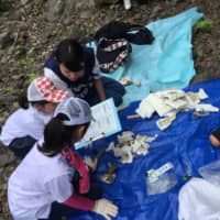 In Kameoka, schoolchildren are educated about the environmental costs of plastic pollution. | COURTESY OF PROJECT HOZUGAWA
