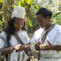 Cacao Hunters knows where the best chocolate is: Colombia