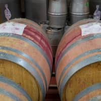 Good things come to those who wait: Barrels full of wine in Fujimaru's winery. | OSCAR BOYD