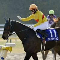 Nanako Fujita became the first female jockey to compete in a JRA Grade 1 race atop Copano Kicking on Sunday at the February Stakes, finishing fifth. | KYODO