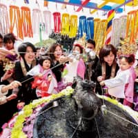 Rejoicing in the birth of Buddha