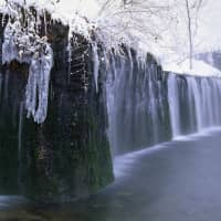 Shiraito Falls is only 3 meters tall, but spans a 70-meter arch. | KARUIZAWA TOURIST ASSOCIATION