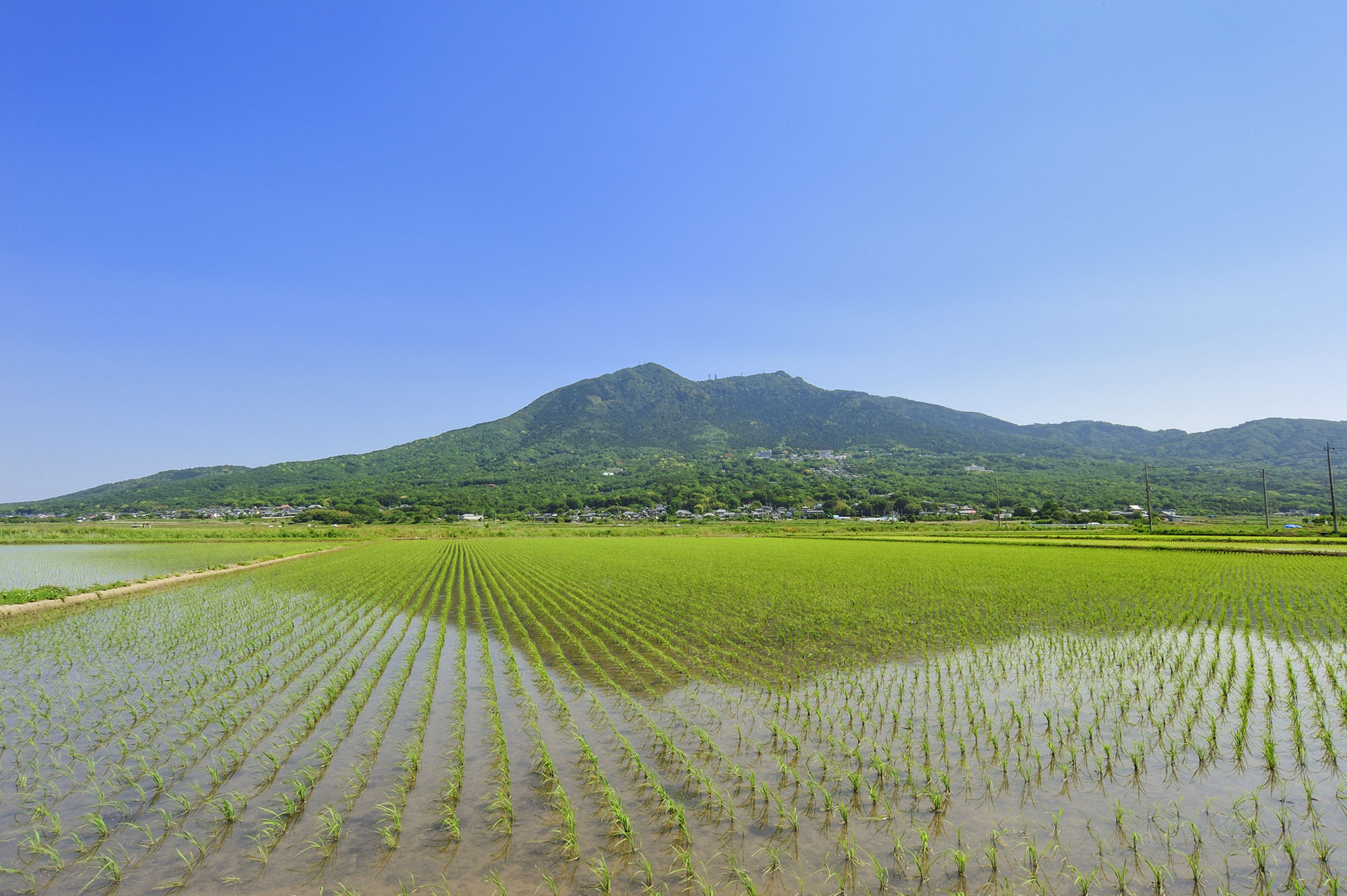 An icon of Ibaraki Prefecture, Mount Tsukuba is covered with greenery in spring.