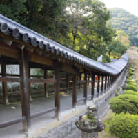 Kibitsu Shrine's roughly 400-meter-long corridor is one of the most famous tourist spots in the city.