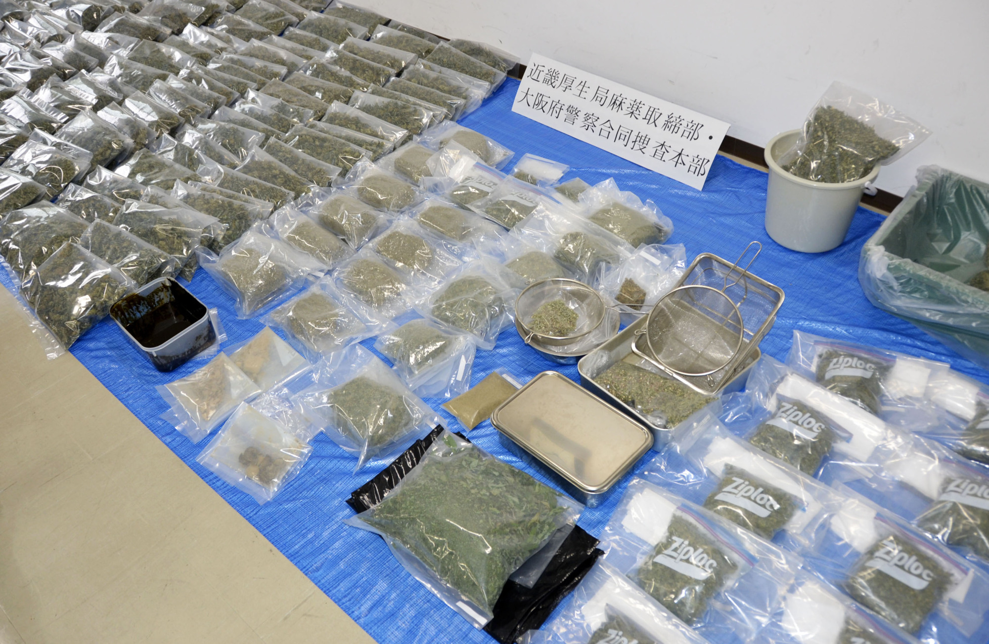 Confiscated bags of dried cannabis are displayed by the Osaka Prefectural Police.   KYODO