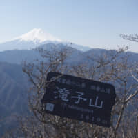 A morning's gift: A spring view of Mount Fuji from the top of Mount Takigo in Ymanashi Prefecture. | OSCAR BOYD