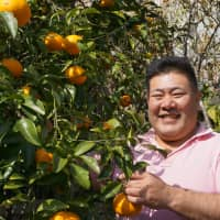 Home-grown produce: Victor Yamaguchi shows off one of La Posada's citrus trees. | NICK SINCLAIR