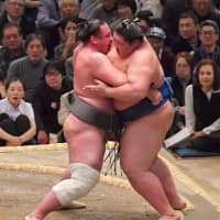 Ozeki Tochinoshin (left) forces out Ichinojo to give the No. 4 maegashira his first loss of the Spring Basho. | NIKKAN SPORTS