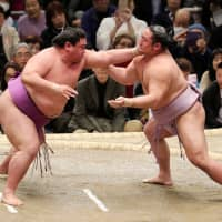 Sumo 101: Closed stables