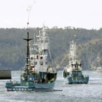 Whaling fleet leaves for north Japan waters in last ostensibly scientific mission before IWC exit