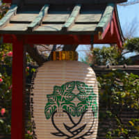Unearth your ... vegetables?: At Matsuchiyama Shoden temple, daikon radishes represent the ignorant part of one's mind. | KIT NAGAMURA