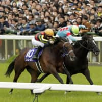 Fierement goes the distance to claim spring Tenno-sho