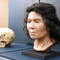 A woman's skull from the Jomon Period, unearthed in Hokkaido, and a model face reproduced with the use of DNA technology are displayed in March 2018 at the National Museum of Nature and Science in Tokyo. | KYODO