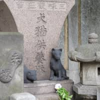 Ekoin Temple in Tokyo's Sumida Ward has a grave for dogs and cats. | CHISATO TANAKA