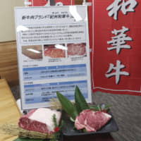Cattle go on diet as new wagyu brand in Wakayama targets health-conscious meat lovers