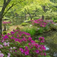 The almost heavenly peripheries  of Tojiin, a little-visited garden in Kyoto.   STEPHEN MANSFIELD