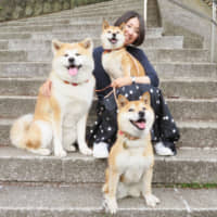 Dogs of a feather: Sumi (left) and her pals, Saku (front) and Sena, pose for a picture with Mika Iwamoto. | KENJI AKUTAGAWA