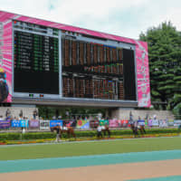 Thoroughbreds walk around the paddock before the seventh race of the day on Sunday at Tokyo Racecourse. Fans can watch horses at a close distance. | KUNIHITO GOTO