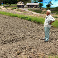 Farmers in Hiroshima Prefecture struggle to recover after 2018 flooding wrecked rice paddies