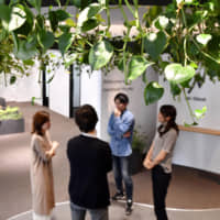 Nextbeat Co.'s entrance is decorated with greenery. | KYODO