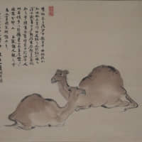 Nagayama Koin's 'Camels' | PRIVATE COLLECTION
