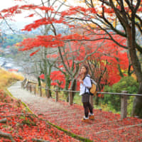 Walk this way: A woman takes a stroll near Mount Wakakusa in Nara Prefecture in autumn. Walking for walking's sake picked up in popularity in Japan in the Meiji Era. | GETTY IMAGES