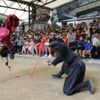 Visitors can watch a ninja performance by costumed actors at the Ninja Museum of Igaryu in Iga, Mie Prefecture.