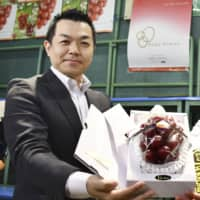 An official from a ryokan chain shows off a record-setting bunch of Ruby Roman grapes Tuesday in Kanazawa, Ishikawa Prefecture. | KYODO