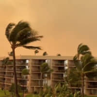 Hawaii declares emergency over Maui wildfires