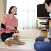 Dog days: Care service near Tokyo offers support to owners of aging canines